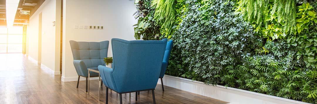 Luchtzuiverende planten op kantoor